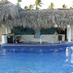 Tropical Pool Bar