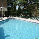 Cedar Lodge Swimming Pool