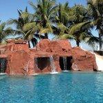 Iguana Pool