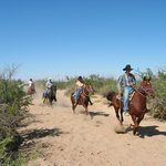 Horseback riding in the sandy washes