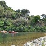 Kayaking on the Te Mata river