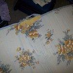 Colchão sofá cama