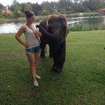 Banyan Tree Spa Phuket Foto