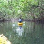Paseo en kayac, con David, nuestro guia aborigen. Inolvidables lugares