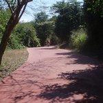biking trail in Ixtapa - hotel has free to-use Bikes