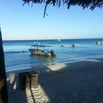Our Dive Boats on the beach