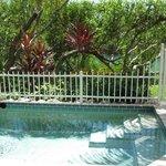 Private veranda/pool