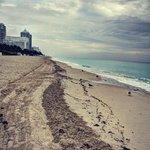 Holiday Inn Beach