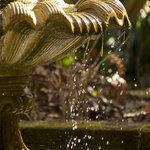 Using high shutter speed on a garden fountain