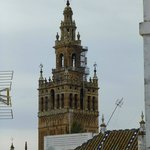view from our roof terrace, the Giralda