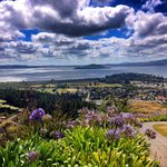 View over Rotorua and lake
