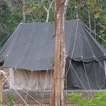 Tent Accommodation within Kuldiha Forest