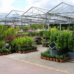Tamar View Nurseries Garden Centre