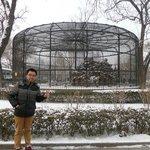 Tianjin People Park Bird Cage
