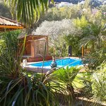 Le jardin, la piscine et le spa... en mars!