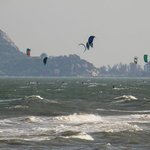 Hua Hin kites