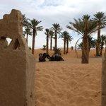 porte sur les dunes