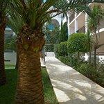 Cala d'or Playa - Jardines
