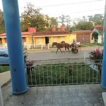 At a Bed and breakfast place in Vinales.