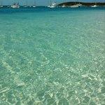 Blue green waters