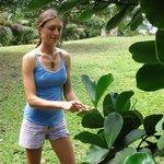 Carmen describes the plant