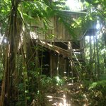 Chataniere Treehouse