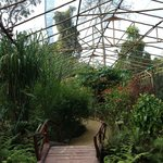In the bamboo and mesh sanctuary