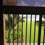 A view from Breakfast Fern balcony