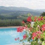 The pool at villa Branca