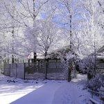 Beautiful Surroundings in Winter at The Overlook Inn!