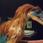 Possible skin and feather coloration of dinosaurs
