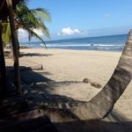Beach at Honduras Shores Plantation