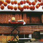 How the work of persimmons 干し柿の作業の様子