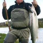 A fine spring salmon in March
