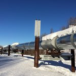 View of pipeline from Alyeska Pipeline Visitor Center, Fairbanks, AK