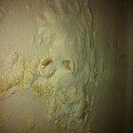 Closeup of damp patch, room 8 Churchills