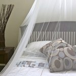 100% cotton bedlinens
