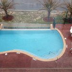 Pool view from Room 304