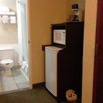 bathroom, closet and fridge area
