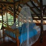 Family Cabana ... Garden Room ....