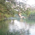 Enjoying the rope swing over the Moho River ...