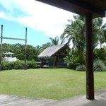 bar/lawn area