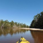 Blackwater River, what a beautiful day!