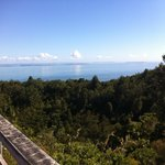 From the summit of Rangitoto
