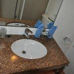Washroom sink