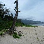 米原ビーチ シャワー
