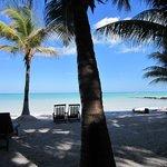 A la sombra de las palmeras el tiempo transcurre al ritmo de la brisa