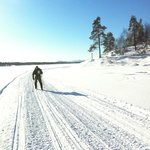 Skiing in the Pasvik Valley close to Kirkenes