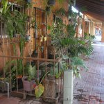 Maison donnant sur une rue du centro à Zihuatanejo