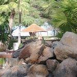 iguanas no restaurante próximo ao lobby